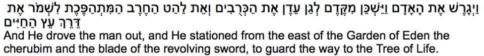 3 Emoji D'var Torah 10:15:14TRANSLITERATED 3